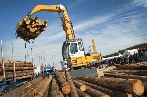 Three new sections at the world's biggest forestry fair