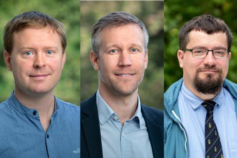 Tre LiU-forskare blir Wallenberg Academy Fellows