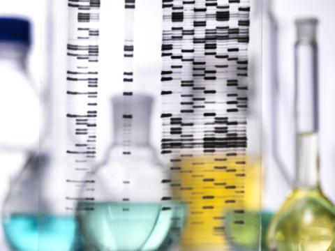 Die Zukunft von Rheuma: Gene, Lebenswandel, Umwelteinflüsse besser verstehen