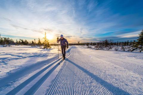 Knallbra føre til årets Trysil Skimaraton