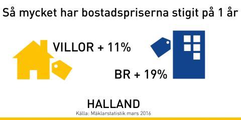 """Mäklare i Halland:  """"Därför fortsätter bostadspriserna uppåt"""""""