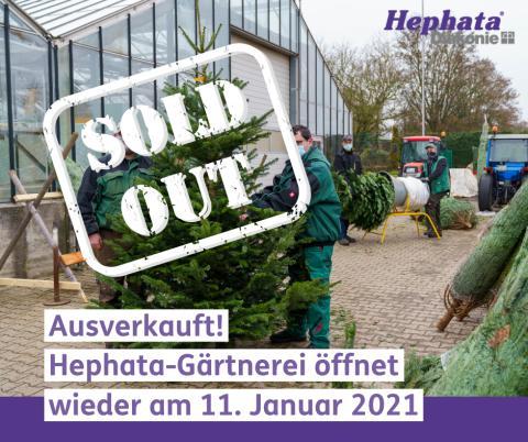 Verkaufsladen der Hephata-Gärtnerei schließt bis 11. Januar
