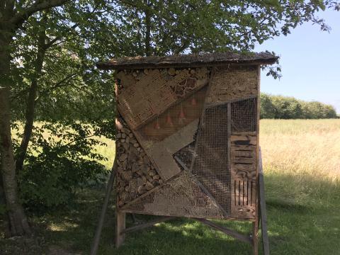 Insektenhotel_Puttgarden