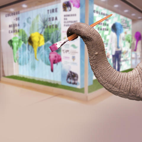 Elephant Parade Brazil National Tour visits two new venues