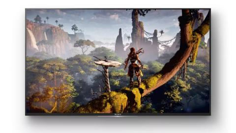 Horizon Zero Dawn™ on Sony XD80 4K HDR TV