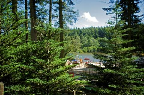 Center Parcs Longleat Forest celebrating 20 successful years
