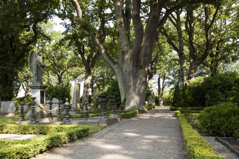 Höganäs kyrkogård