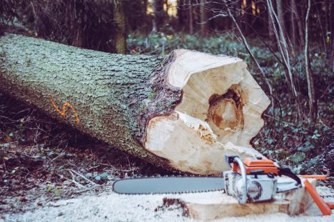 Kickstart för säsongen på Mittia Skogstransport