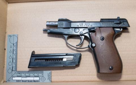 Firearm 1