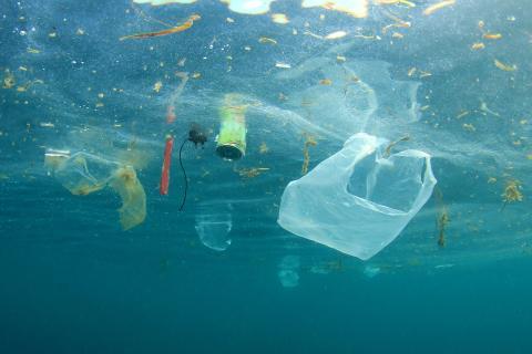 marine pollution.jpg