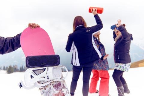 Sony Speaker Lifestyle 13