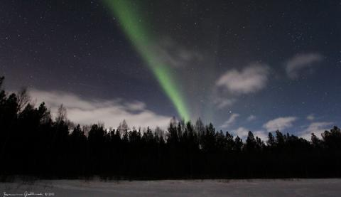 Take the Cruise of a Lifetime to see the amazing 'Northern Lights' with  Fred. Olsen Cruise Lines