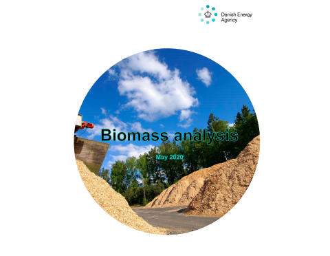 Biomass analysis has been translated into English