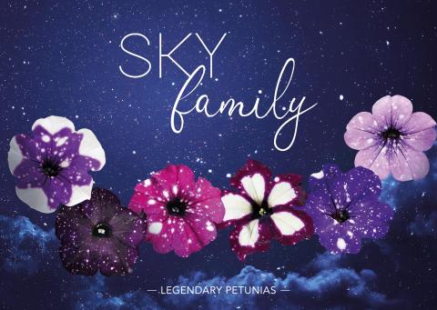 SKYfamily