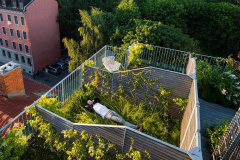 D36 -  Green House, Element Arkitekter AS