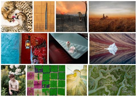 Sony World Photography Awards 2020: Open Competition shortlists and winners announced