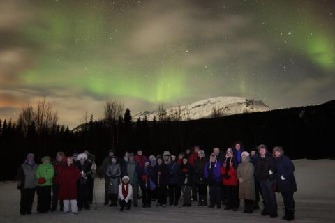 Take a Fred. Olsen 'Norway Winter' cruise for the chance to experience the spectacular 'Northern Lights'