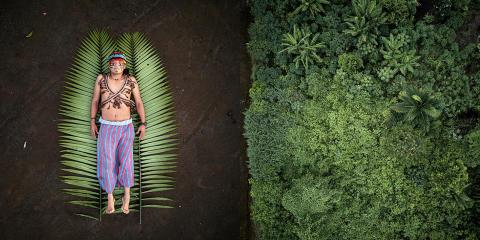 Bekendmaking winnaars Sony World Photography Awards 2020