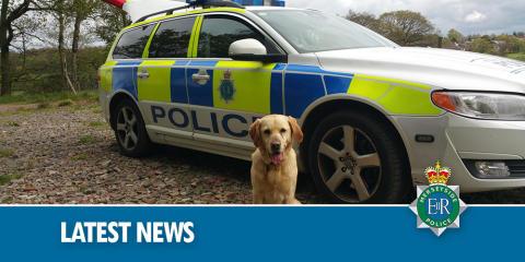 PD Kane collars suspected burglar hiding under washing maiden in Litherland