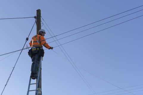 Engineer up pole (5)