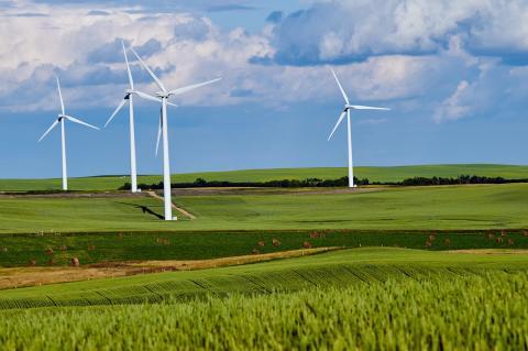 TEC har investeret i 100% vedvarende energi