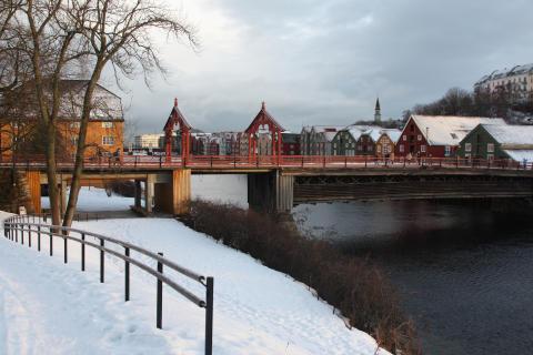 Trondheim miljø