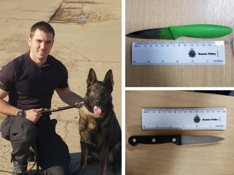 Men with knives tracked by Police Dog Lewis