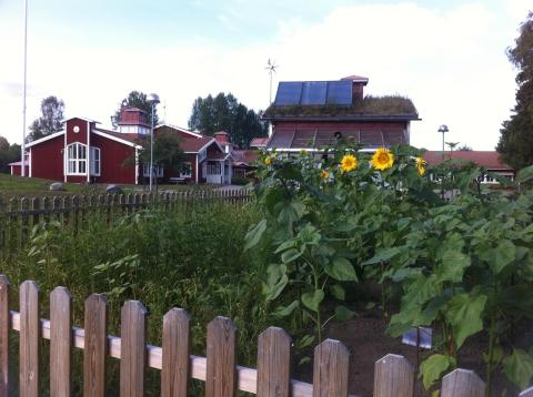 Vallens miljöskola i Sundsvall vann KRAVs hållbarhetspris