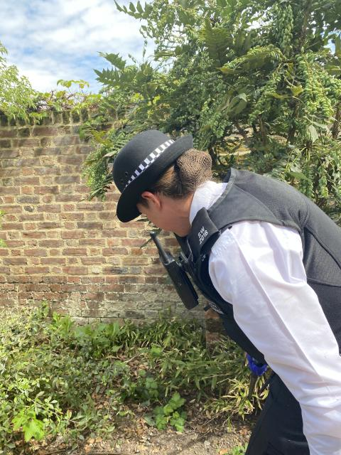 Officer during weapons sweep.JPG