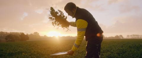 Svenskt Sigills uppdaterade Klimatcertifiering bidrar till minskat klimatavtryck för Findus ärtodling