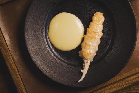 Michelin-kokker lovpriser norske skalldyr