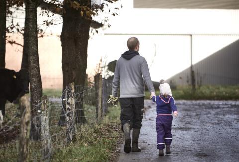 Tættere samarbejde skal sikre en bæredygtig fremtid for den europæiske mejerisektor