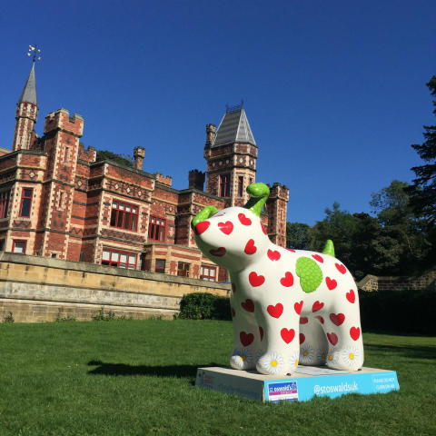 Go North East em-barks on Great North Snowdogs journey