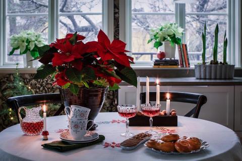 Tips för snyggaste Instagrambilden till jul