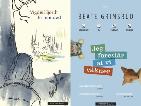 Beate Grimsrud og Vigdis Hjorth blant de nominerte til Kritikerprisen for beste voksenbok