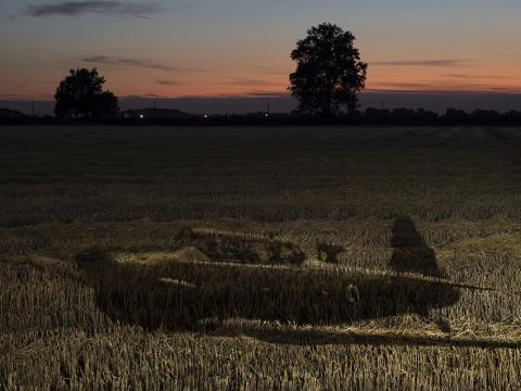 © Luigi Bussolati, Italy, 2nd Place, Professional competition, Creative, Sony World Photography Awards. 2021_05