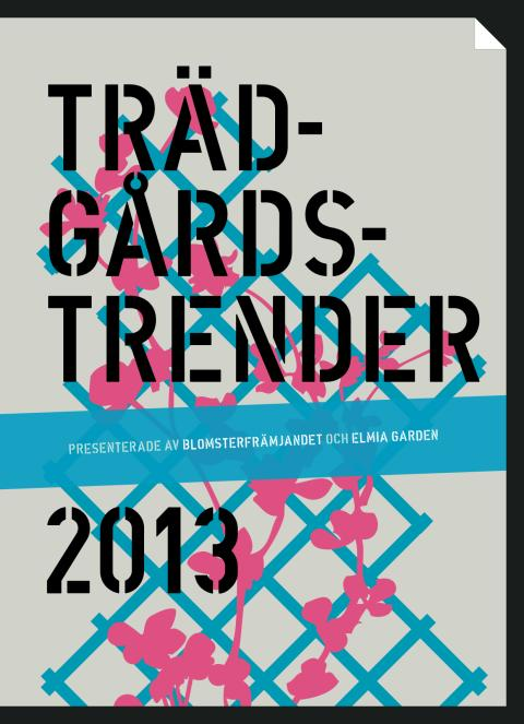 Trendbroschyr 2013
