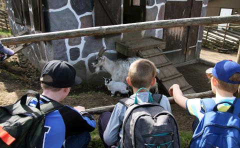 3 000 andraklassare besöker Skånes Djurpark