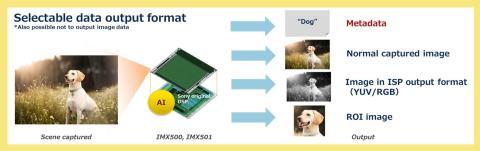 Sony_Intelligent Vision Sensor_data output