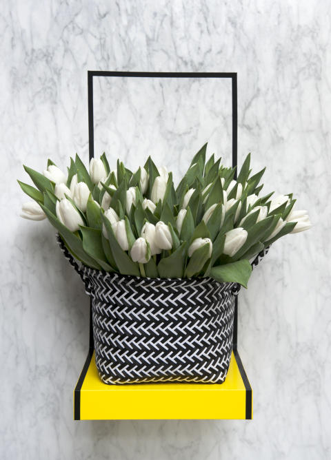 Vi älskar svenska tulpaner!