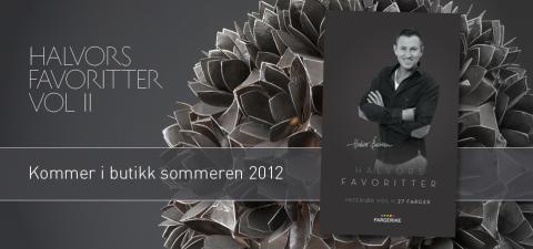 Halvor Bakke lanserer nytt fargekart for Fargerike!