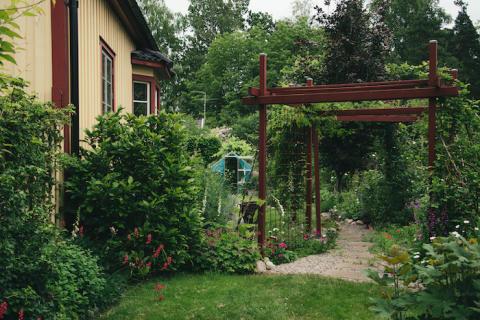 Egen runsten - udda utsmyckning i Blixtarnas trädgårdsoas