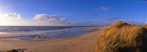 ​SCS Beach-Clean-Up auf Sylt