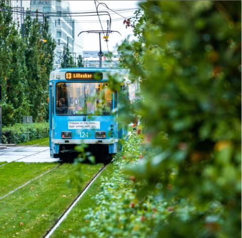 Trikk på ny trasé i Bjørvika og Dronning Eufemias gate
