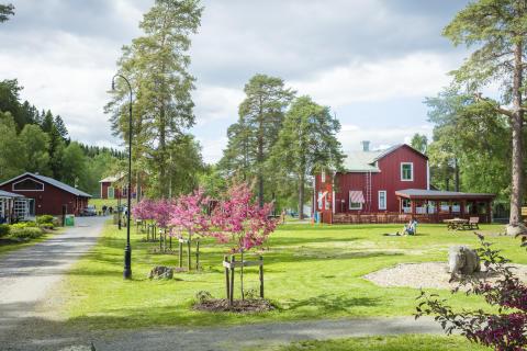 Umeå Energicentrum har öppnat för sommaren