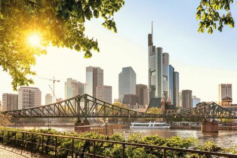Neue Website endokrinologikum Frankfurt