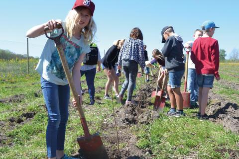 1500 elever planterar var sitt träd för framtiden