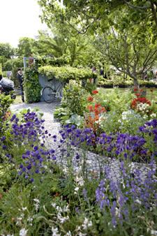 MALMÖ GARDEN SHOW - en växande mötesplats för såväl amatörer som trädgårdsproffs