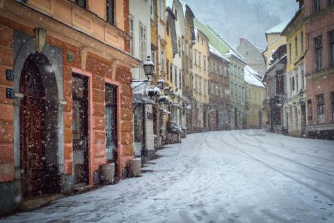 Minskad risk för isras – en av fördelarna med gröna tak på vintern