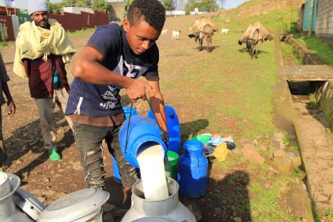 Ny yoghurt skal booste bæredygtig udvikling i Etiopien